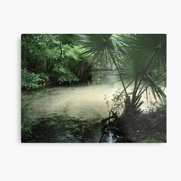 Outflow from the Beaverdam Metal Print