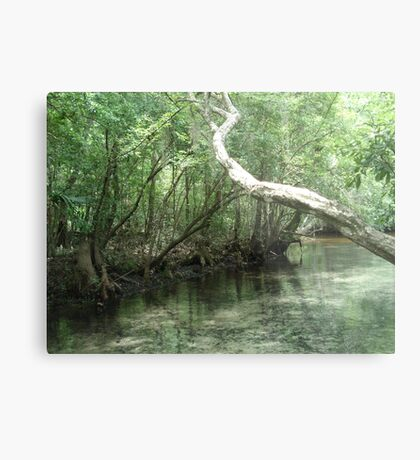 The Overhanging Branch Metal Print
