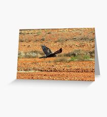 Wedge tailed Eagle 2 Greeting Card