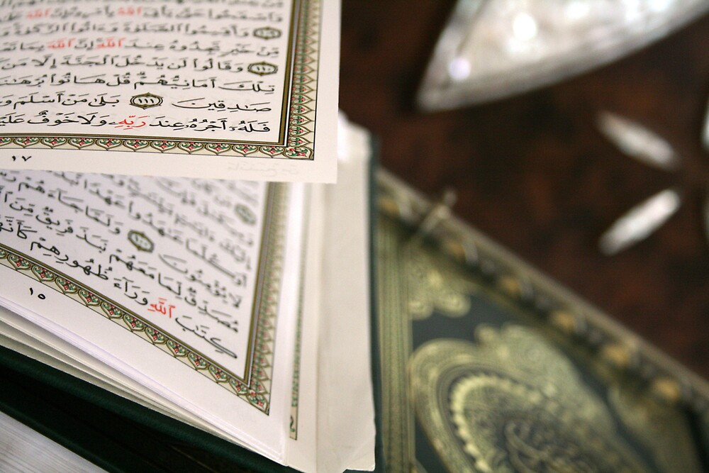 The Koran by Francisco Vasconcellos
