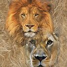 Lion King and Queen by NadineMay