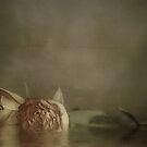 ~Retrospective~ by tonilouise