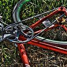 Bike by Tim Wright