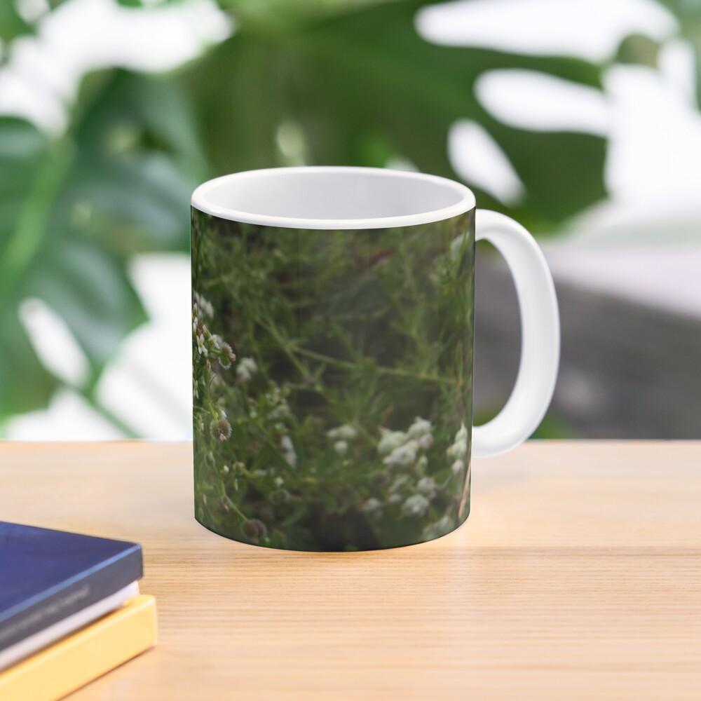Cleavers (Galium aparine) Mug