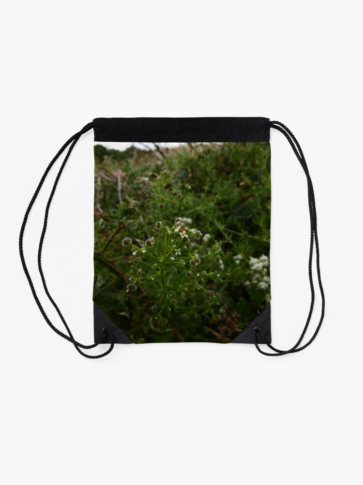 Alternate view of Cleavers (Galium aparine) Drawstring Bag