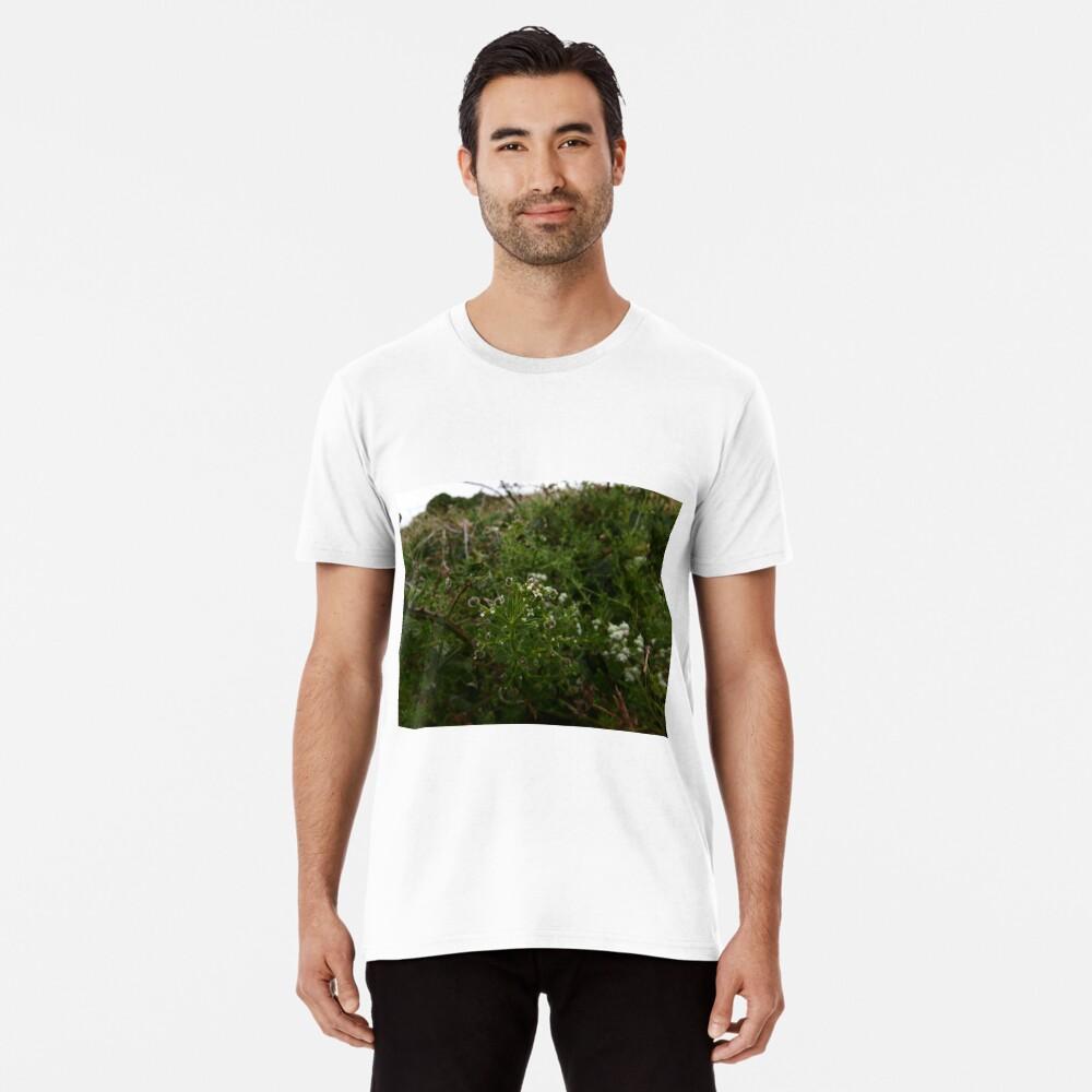 Cleavers (Galium aparine) Premium T-Shirt
