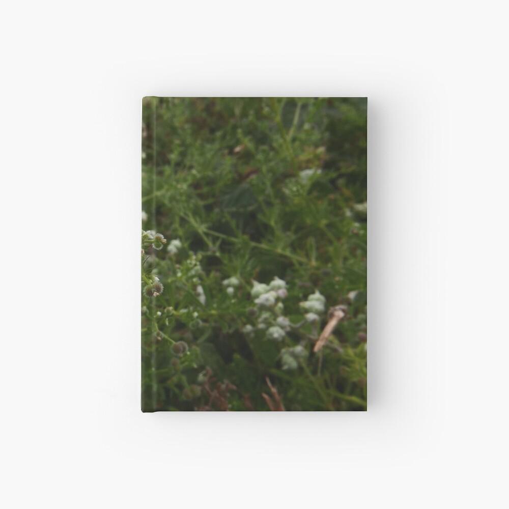 Cleavers (Galium aparine) Hardcover Journal