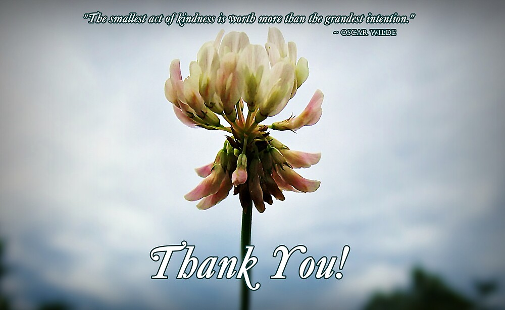 Thank You! by Greeting Cards by Tracy DeVore