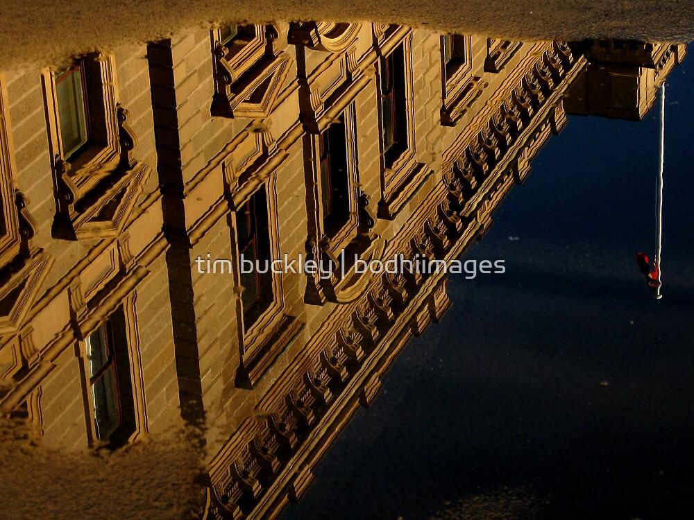 puddle treasury buildings. hobart, tasmania by tim buckley   bodhiimages