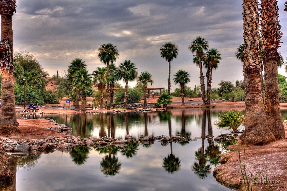 Desert Oasis by Sue  Cullumber