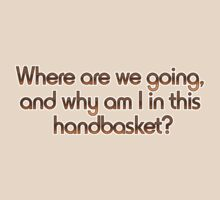 Where are we going, and why am I in this handbasket?