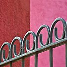 Red wall and fence  by Linda Sparks