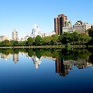 Central Park, NYC by Dalmatinka