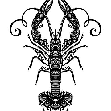 Black and White Print of Exotic Langoustine by lissantee
