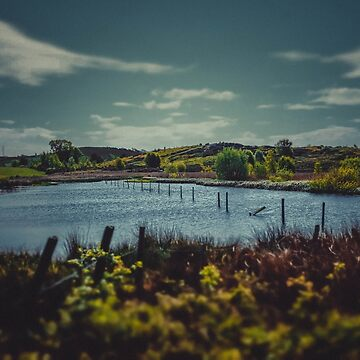 The Lake at Waun-Y-Llyn by Undersound