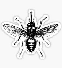 bad fly Sticker