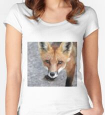 Please Feed Me - Red Fox Women's Fitted Scoop T-Shirt