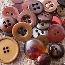 Button Brown One by knoppie
