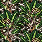 Palm on Polygon Pattern - White Black Gold by Nicole Demereckis