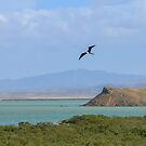 Desert Meets Caribbean Blue by Ryan + Corinne Priest