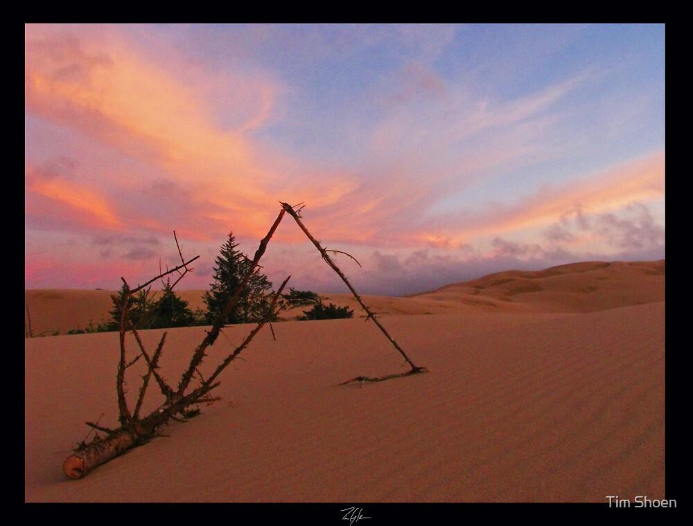 Dune Part I by Tim Shoen