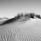 Coorong Sand Dunes by Leeo