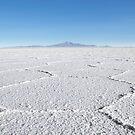 Uyuni Salt Flats by Ryan + Corinne Priest