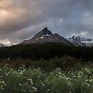 Patagonia Sunset by Ryan + Corinne Priest