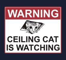Ceiling Cat Sign