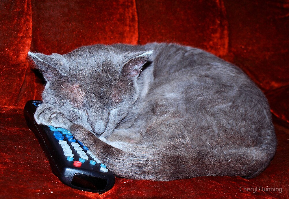 go ahead try to change the channel by Cheryl Dunning