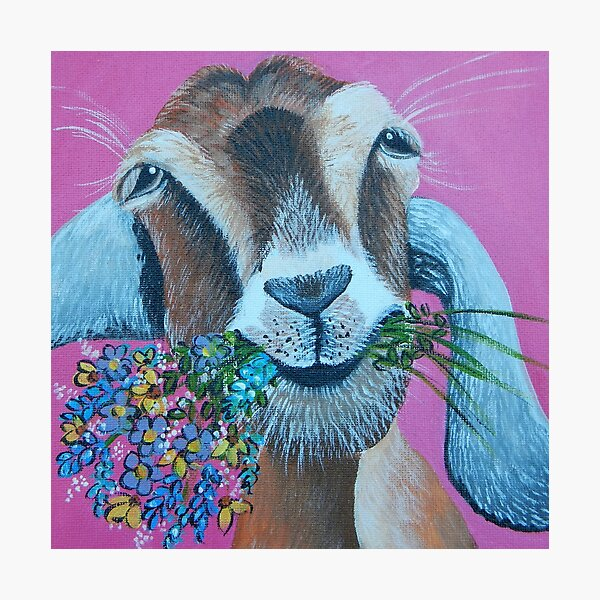 Goat with Flowers Photographic Print