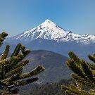 Snow Capped Volcano by Ryan + Corinne Priest