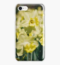 Yellow Daffodil iPhone Case/Skin