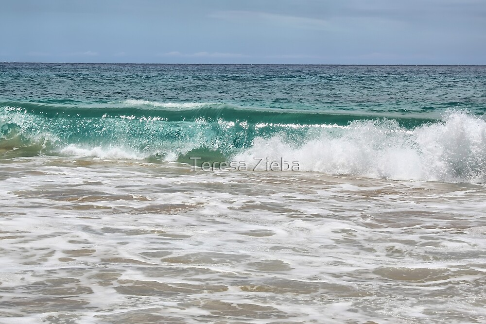 Makena Beach Wave by Teresa Zieba