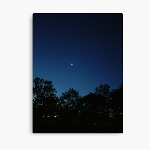 In the Still of the Night.... Canvas Print
