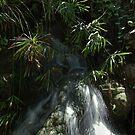 Waterfall by tgmurphy