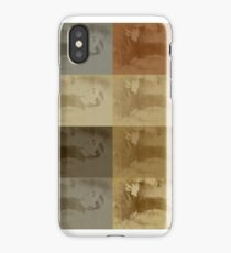 140.1.Sheffield iPhone Case