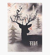 Yuletide Photographic Print