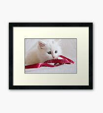 Oliver in a Twist Framed Print
