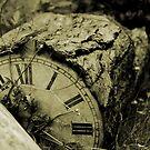 A Stopped Clock by deblobbie