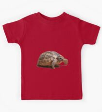 Portrait of a Young Wild Tortoise Isolated Kids Tee