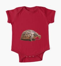 Portrait of a Young Wild Tortoise Isolated One Piece - Short Sleeve