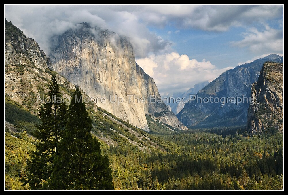 yosemite national park fog - photo #3
