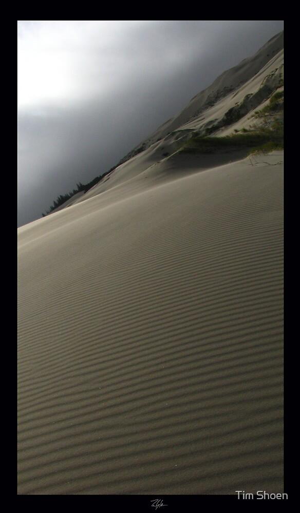 The Dune Part Three by Tim Shoen