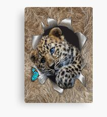Baby Leopard Popping out Canvas Print
