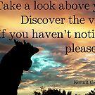Look up! by Etakeh