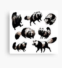 Raccoon dog Canvas Print