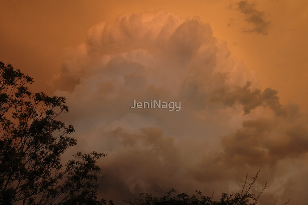 Afternoon Storm Clouds by JeniNagy