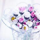 Ein Blumenstrauß aus Gänseblümchen von AugenBlicke