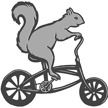 Squirrel on bike  by amelielegault